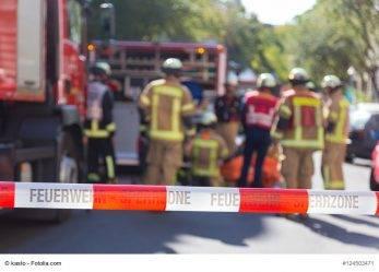 NRW: Verletzte auf Sportfest durch Eichenprozessionsspinner