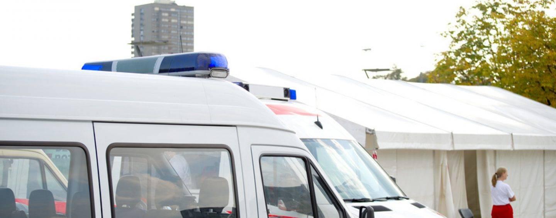 Köln: 12 Verletzte durch den Eichenprozessionsspinner